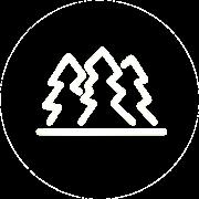 Icon für den Bereich DigitalTrees